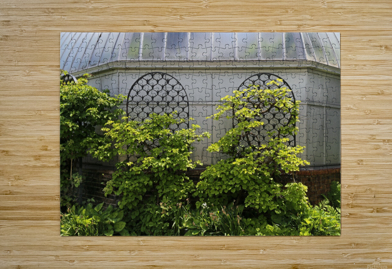 Belle Isle Consevatory Trellis  HD Metal print with Floating Frame on Back