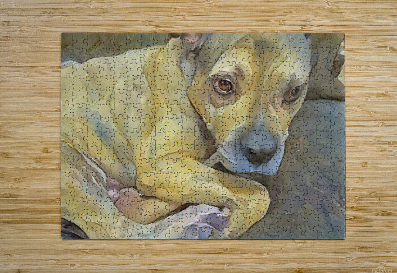 Dog Painting (24)  HD Metal print with Floating Frame on Back