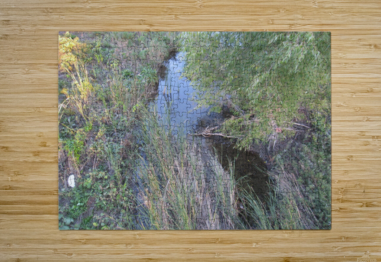 Landscape Photograph (36)  HD Metal print with Floating Frame on Back