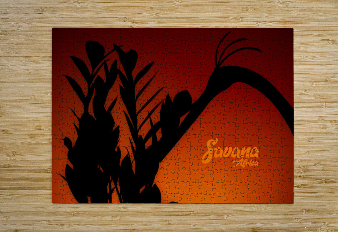 Savana Africa  HD Metal print with Floating Frame on Back