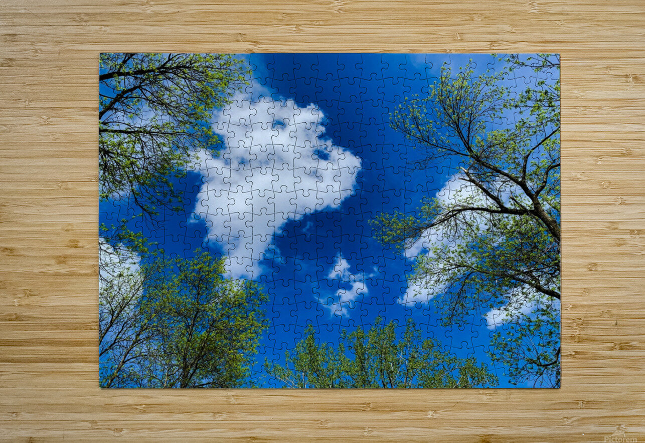 Bliss a Sky   Impression métal HD avec cadre flottant sur le dos
