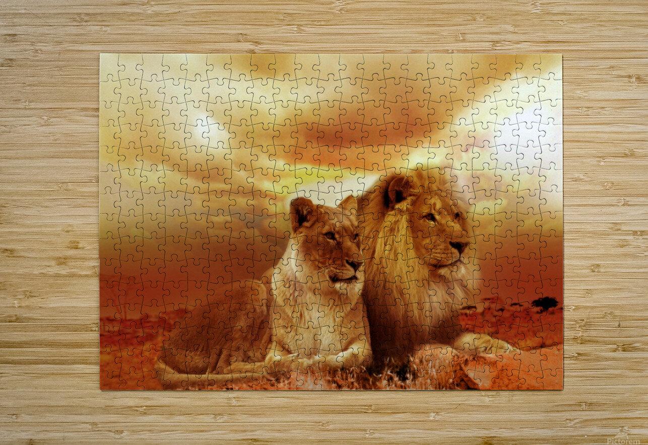 lion safari africa landscape  HD Metal print with Floating Frame on Back