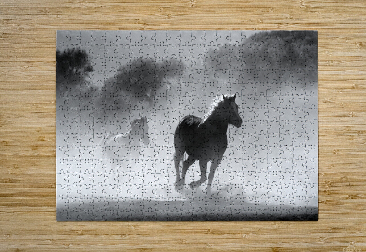 horse herd dust nature wild  HD Metal print with Floating Frame on Back
