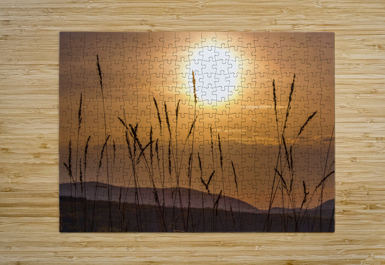 Colebrook Afternoon  HD Metal print with Floating Frame on Back
