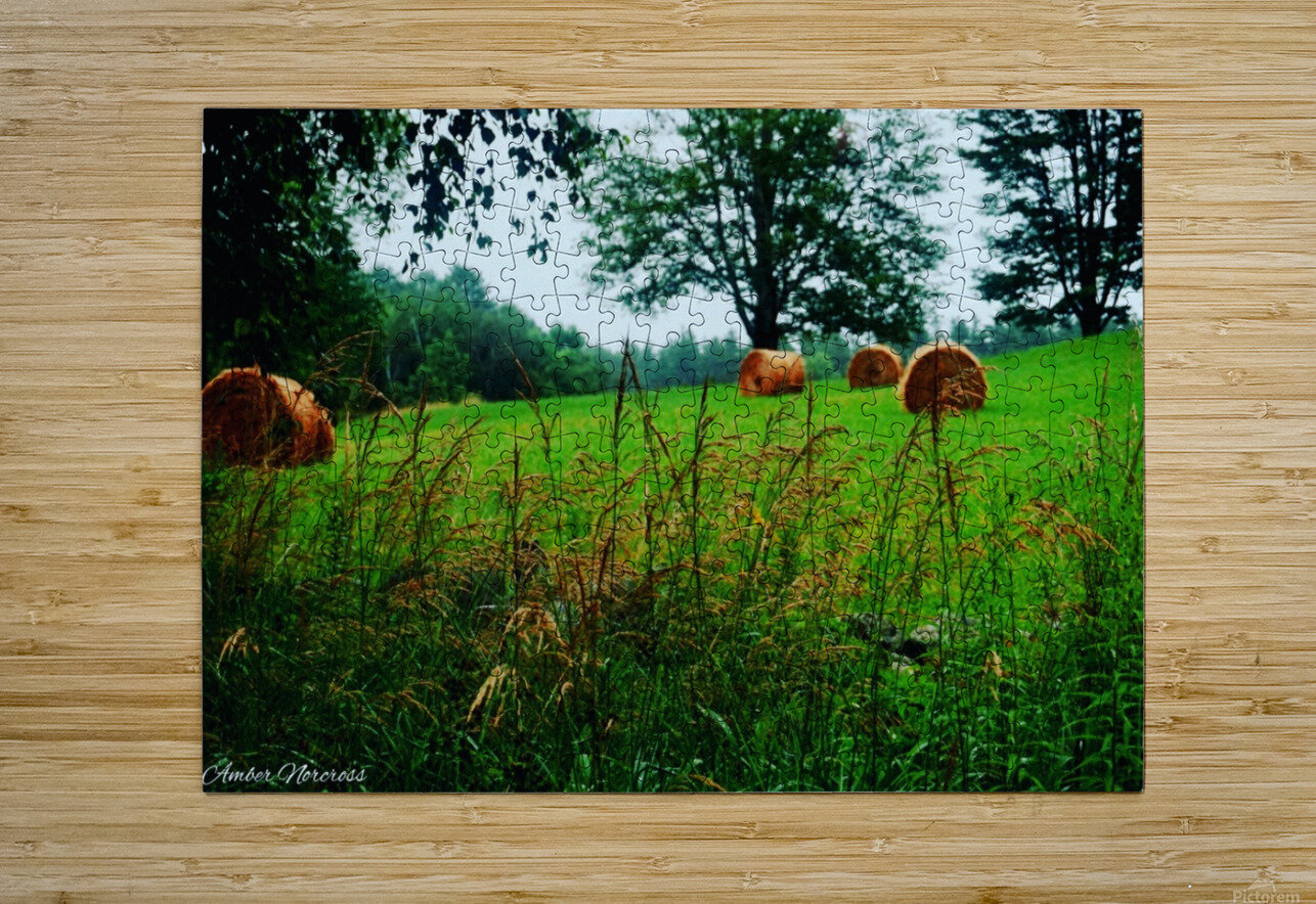 Round bales  HD Metal print with Floating Frame on Back
