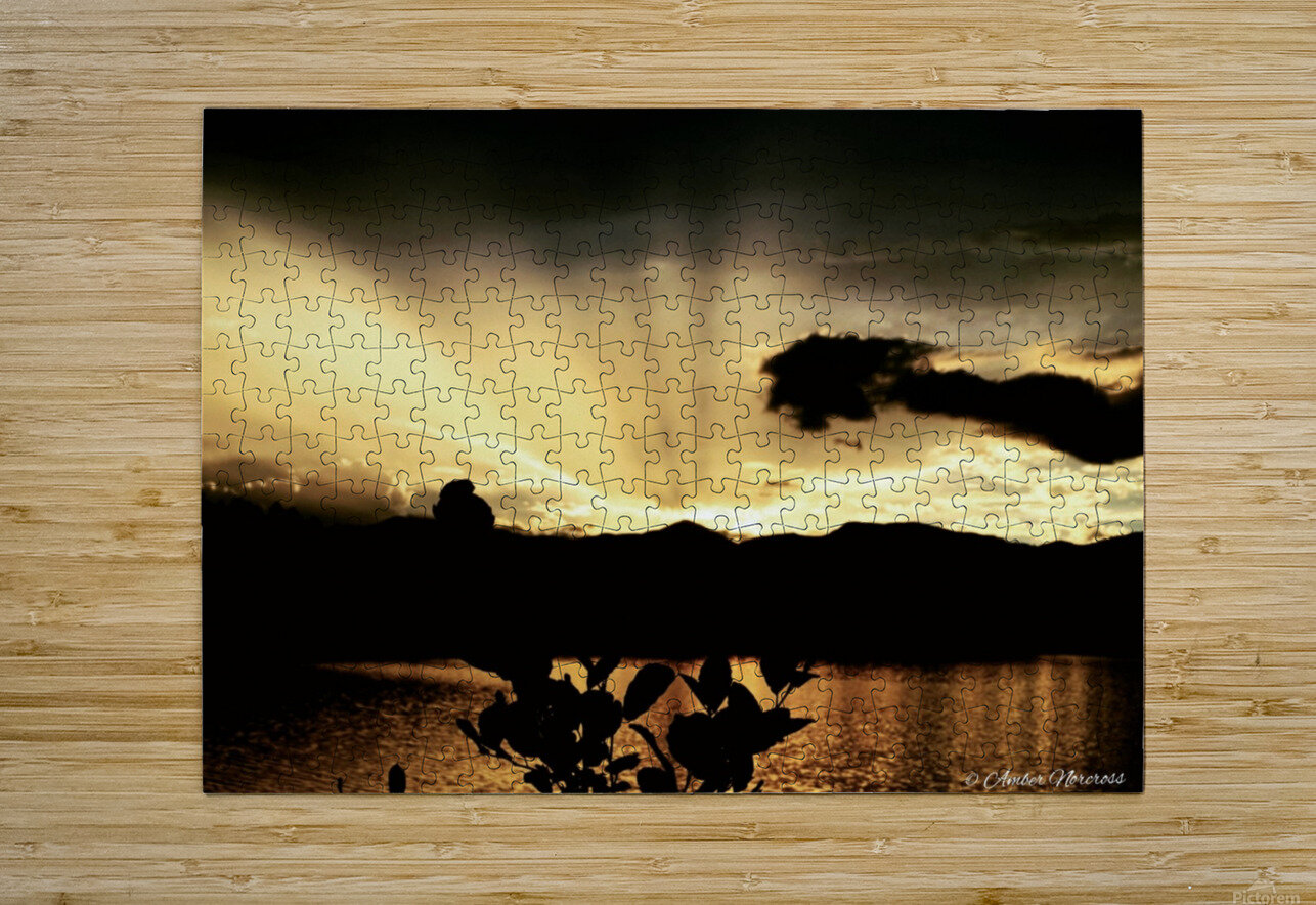 Ray of light  HD Metal print with Floating Frame on Back