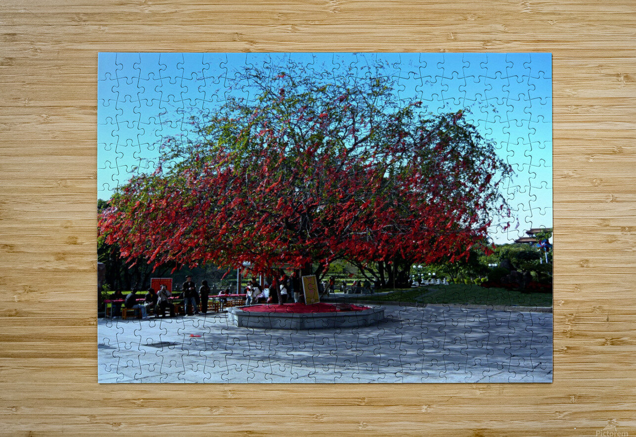 P36 - Red Red Tree  HD Metal print with Floating Frame on Back