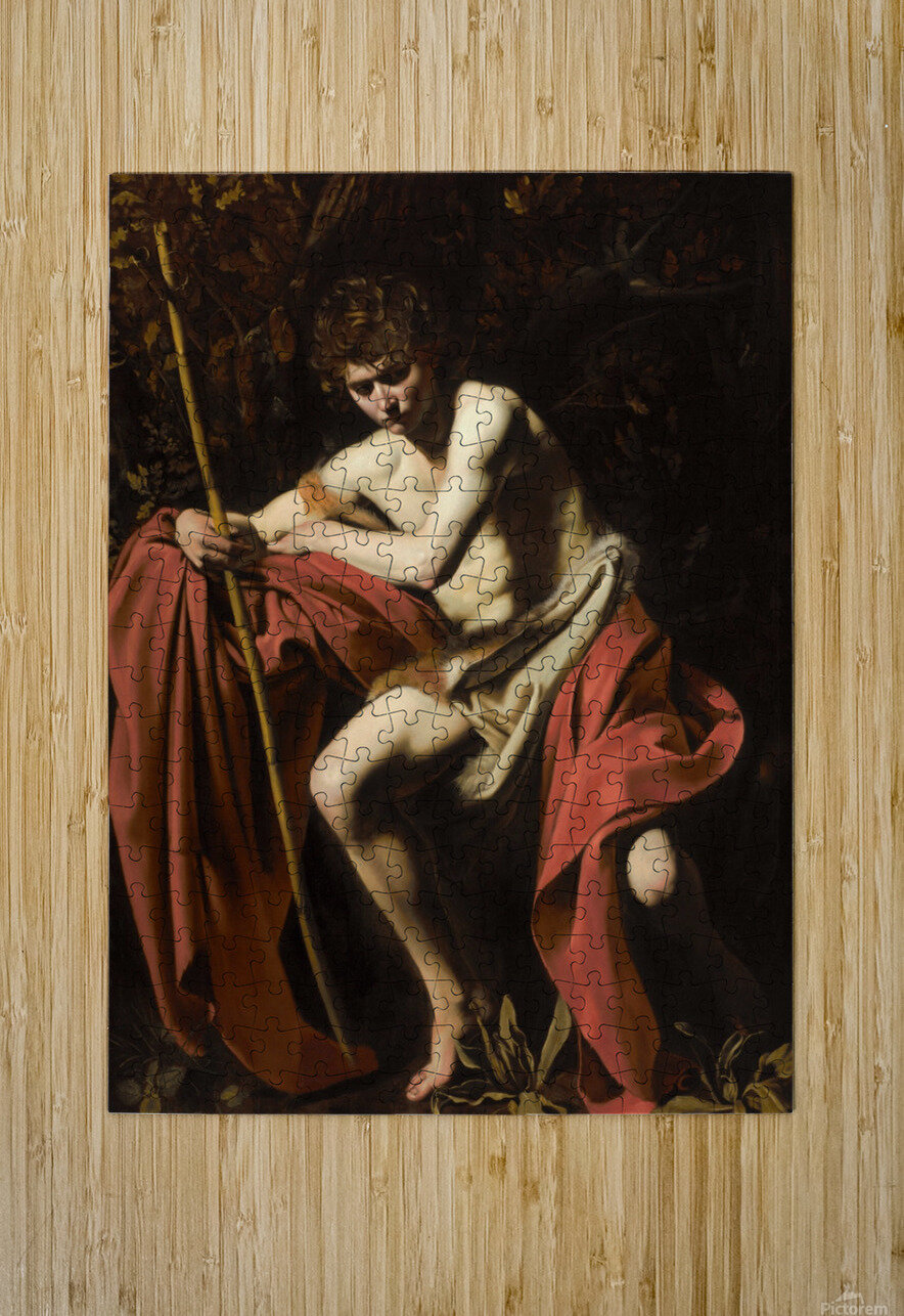 Saint John the Baptist in the wilderness  HD Metal print with Floating Frame on Back