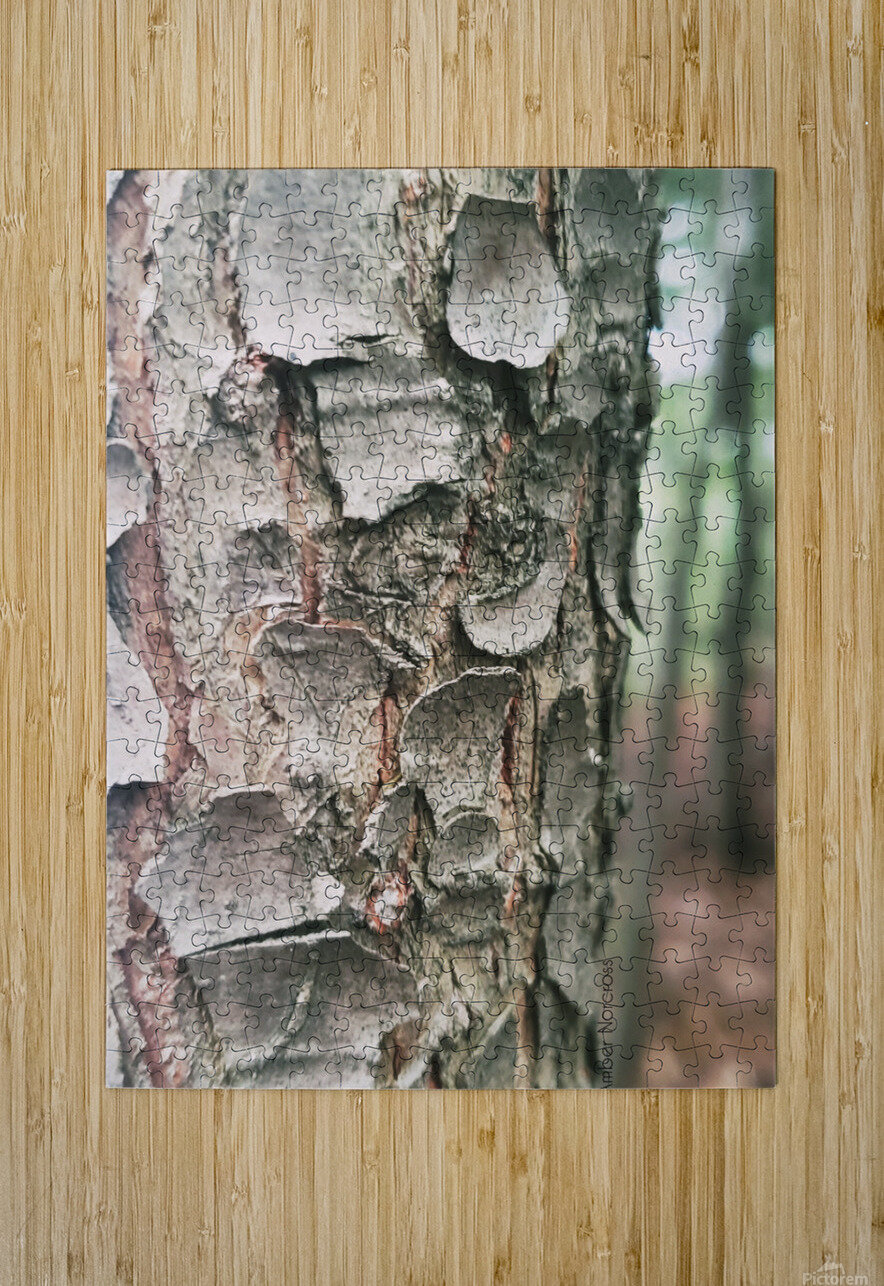 Bark  HD Metal print with Floating Frame on Back