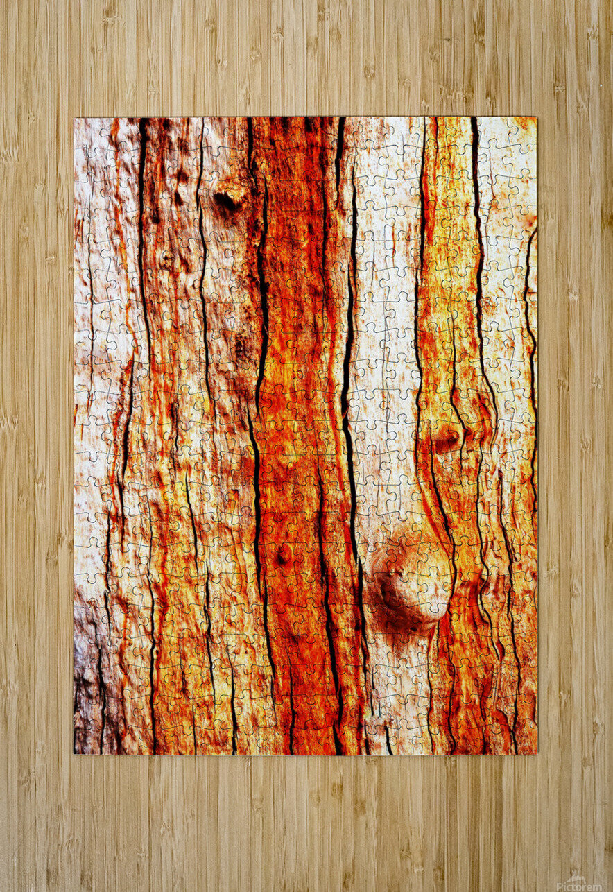 Murray Gum Tree Bark 12  HD Metal print with Floating Frame on Back