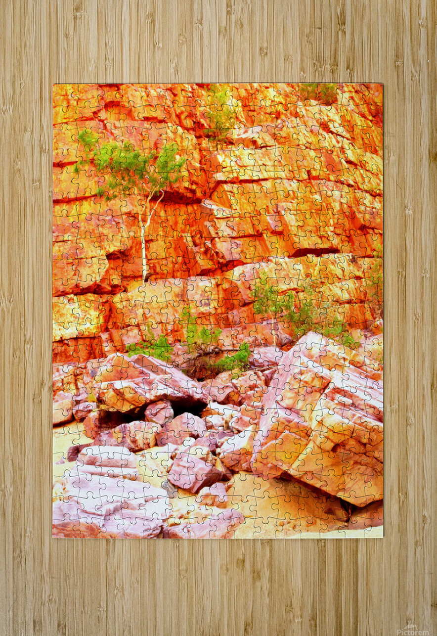 Surviving - Ormiston Gorge  HD Metal print with Floating Frame on Back