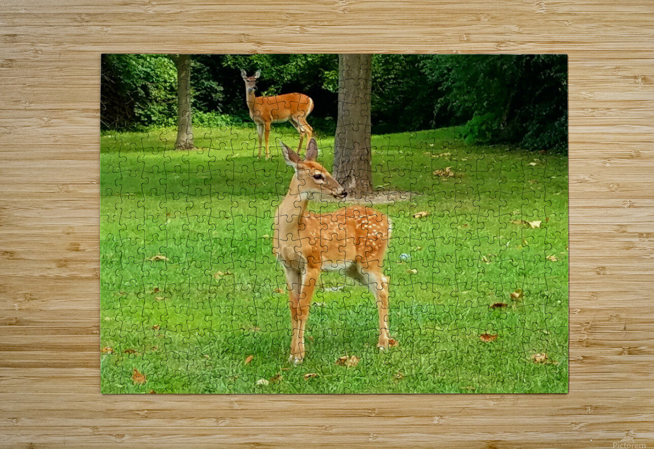 20190909_153647  HD Metal print with Floating Frame on Back
