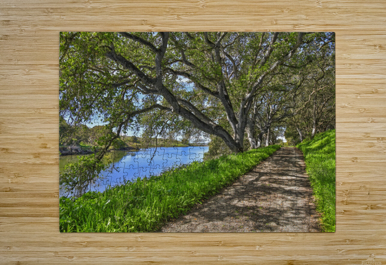 By the river  HD Metal print with Floating Frame on Back