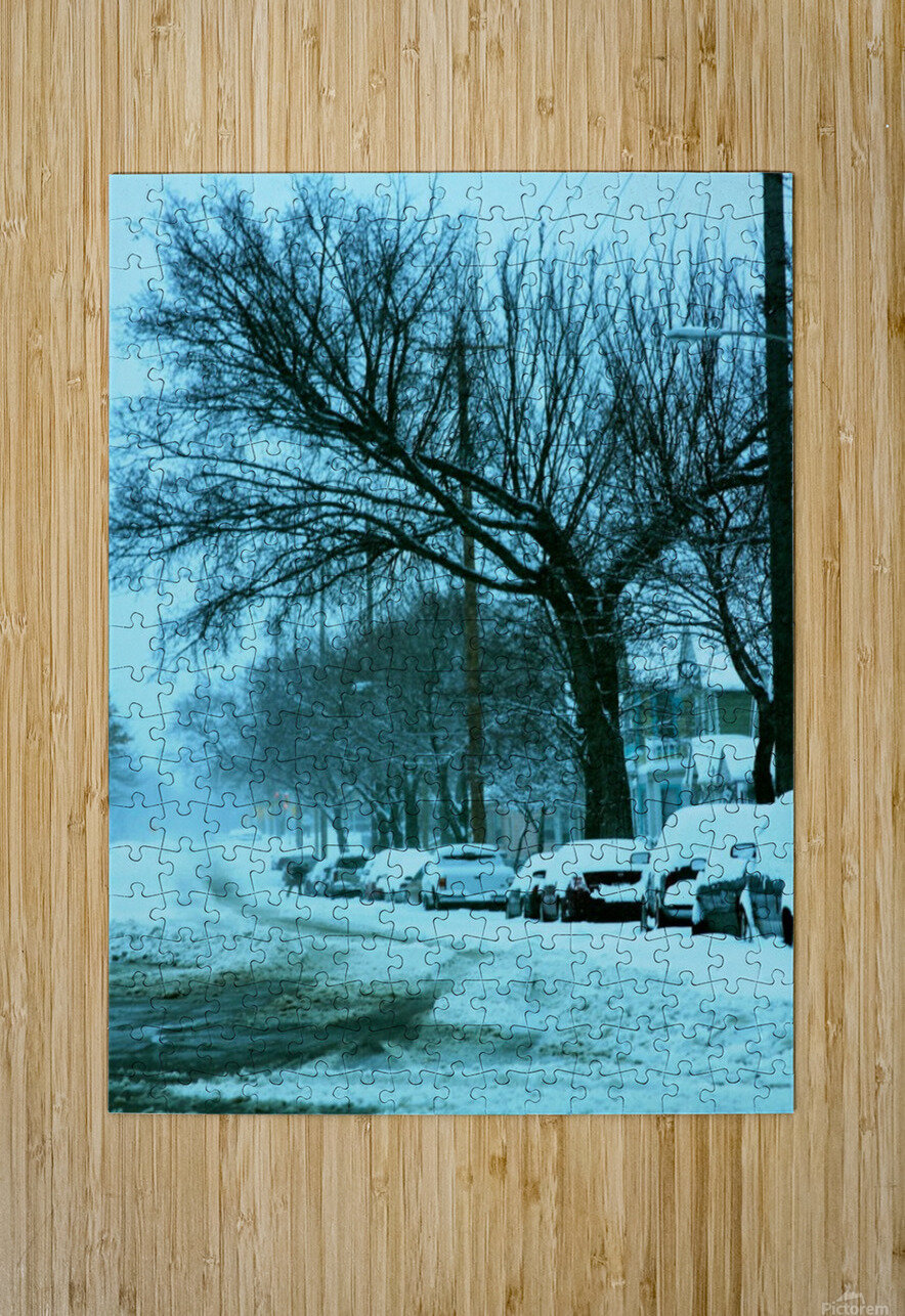 Frost  HD Metal print with Floating Frame on Back
