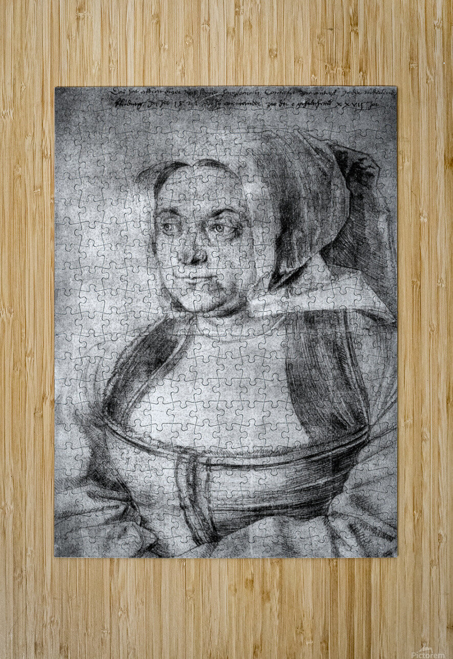 Agnes Durer in Dutch Tracht  HD Metal print with Floating Frame on Back