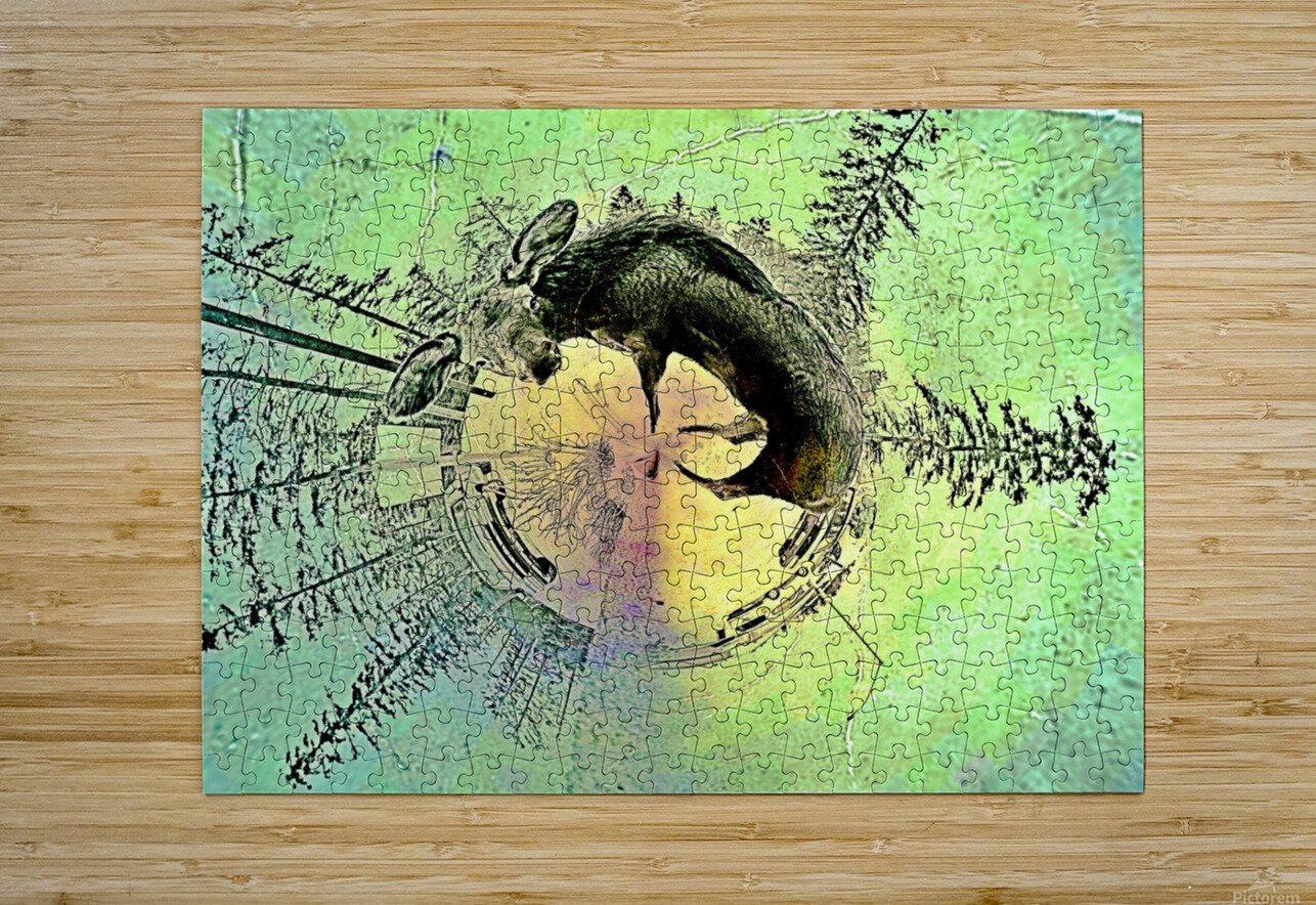 abstract baby moose   HD Metal print with Floating Frame on Back