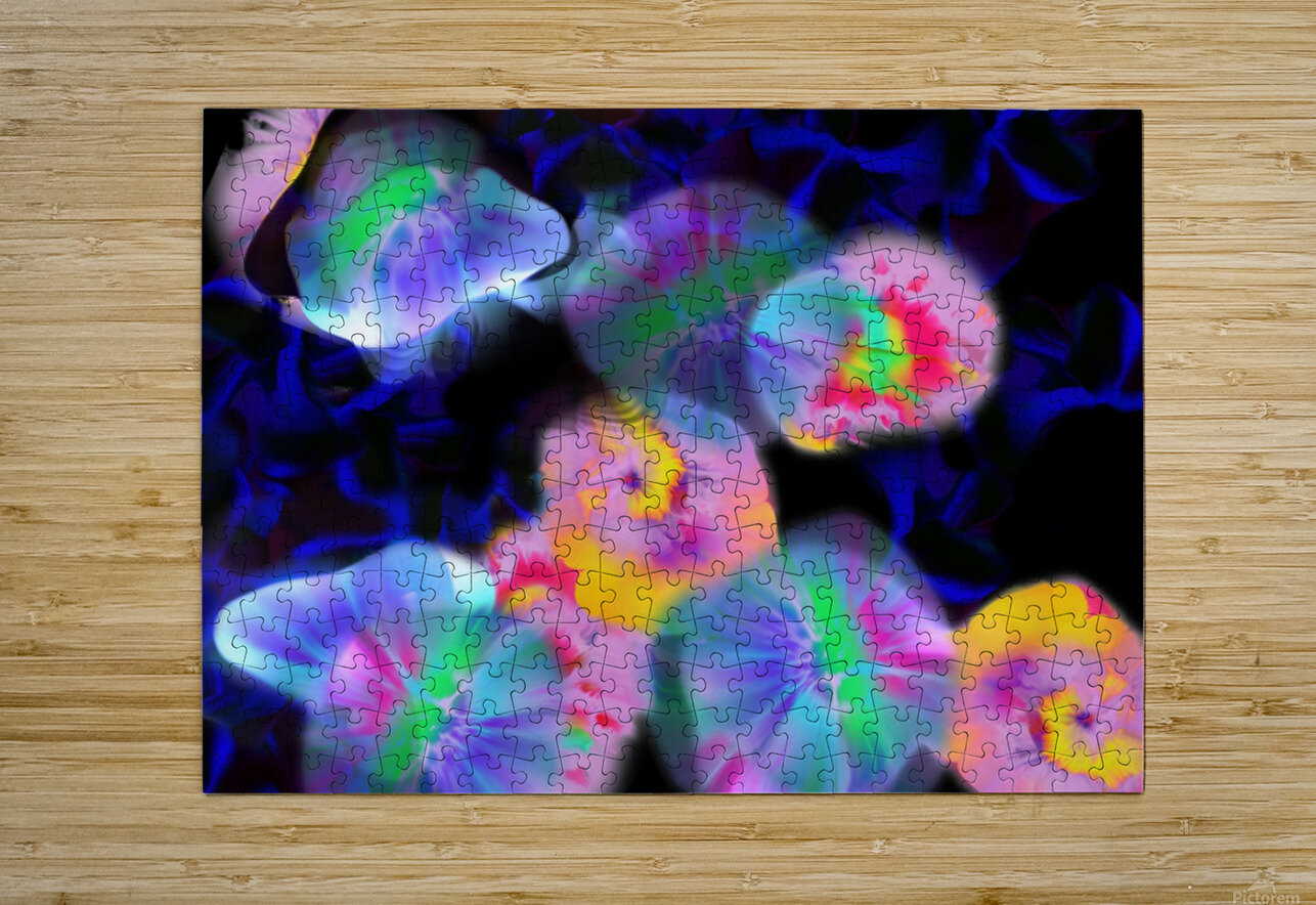 Ref: 848  HD Metal print with Floating Frame on Back