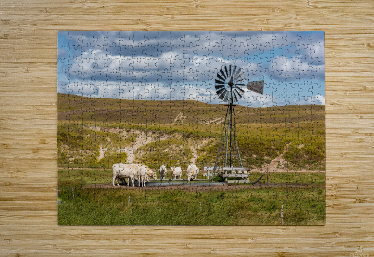 Trails Lead To Water Tanks  HD Metal print with Floating Frame on Back