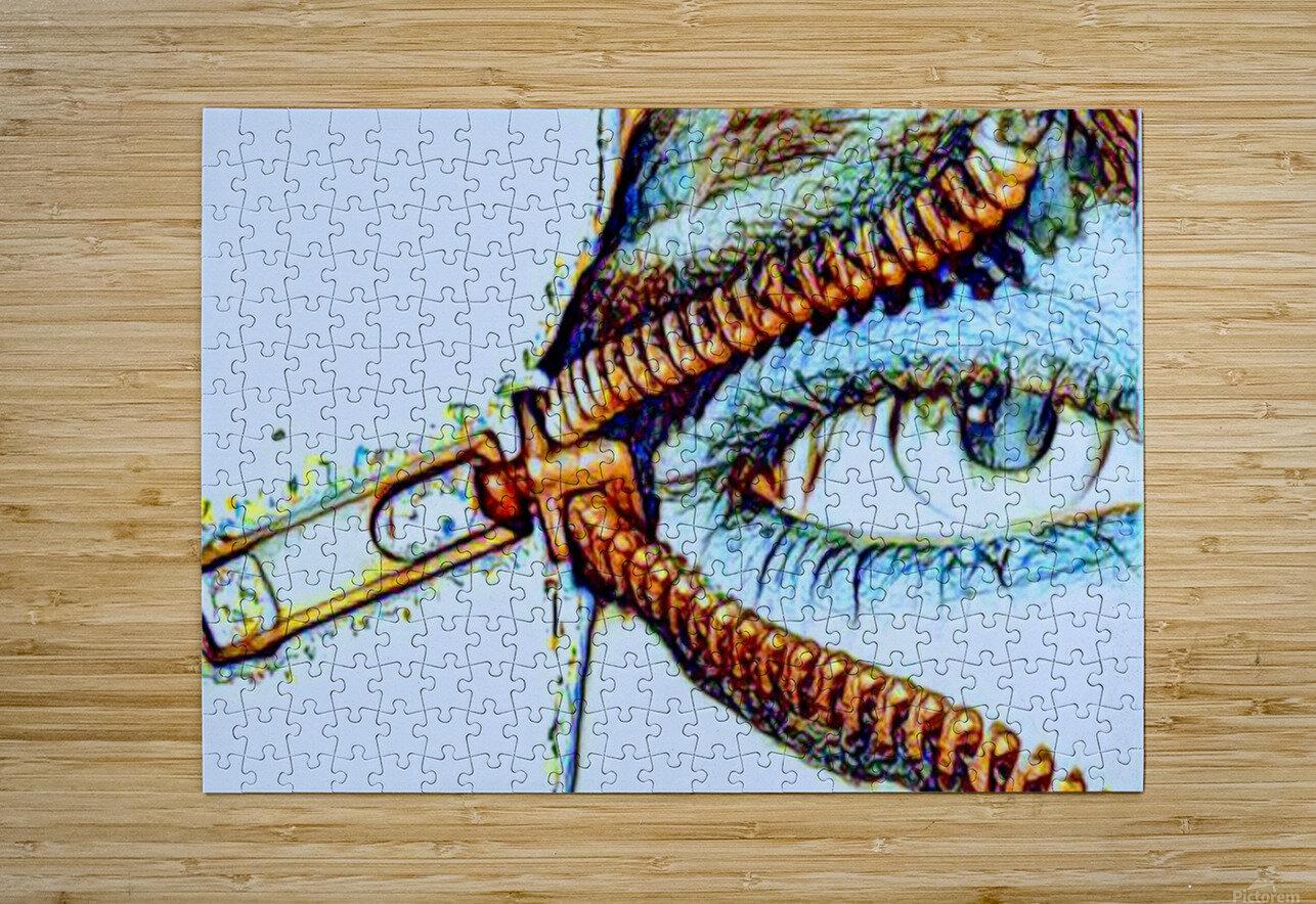 zipper eye  HD Metal print with Floating Frame on Back