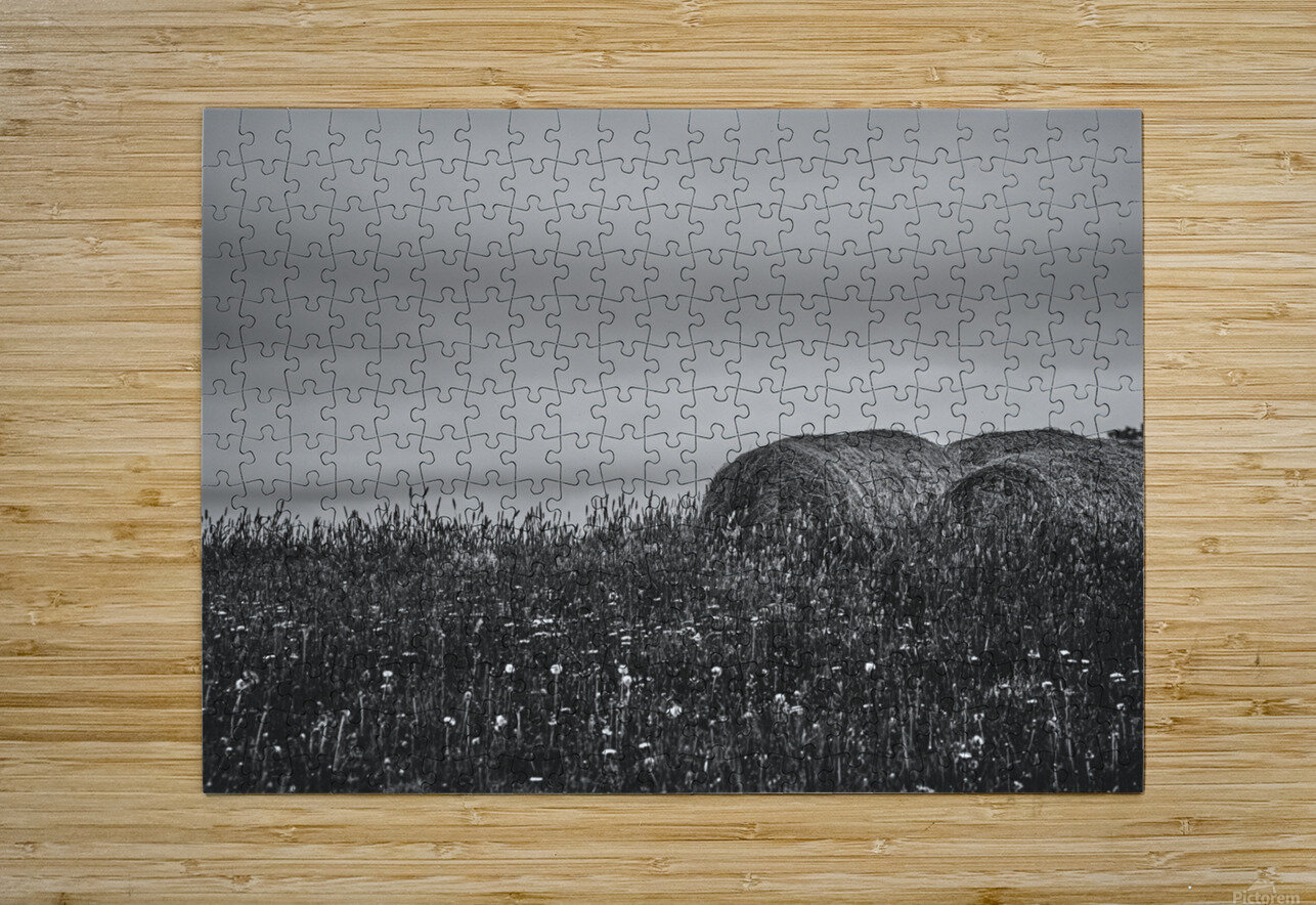Haystacks  HD Metal print with Floating Frame on Back