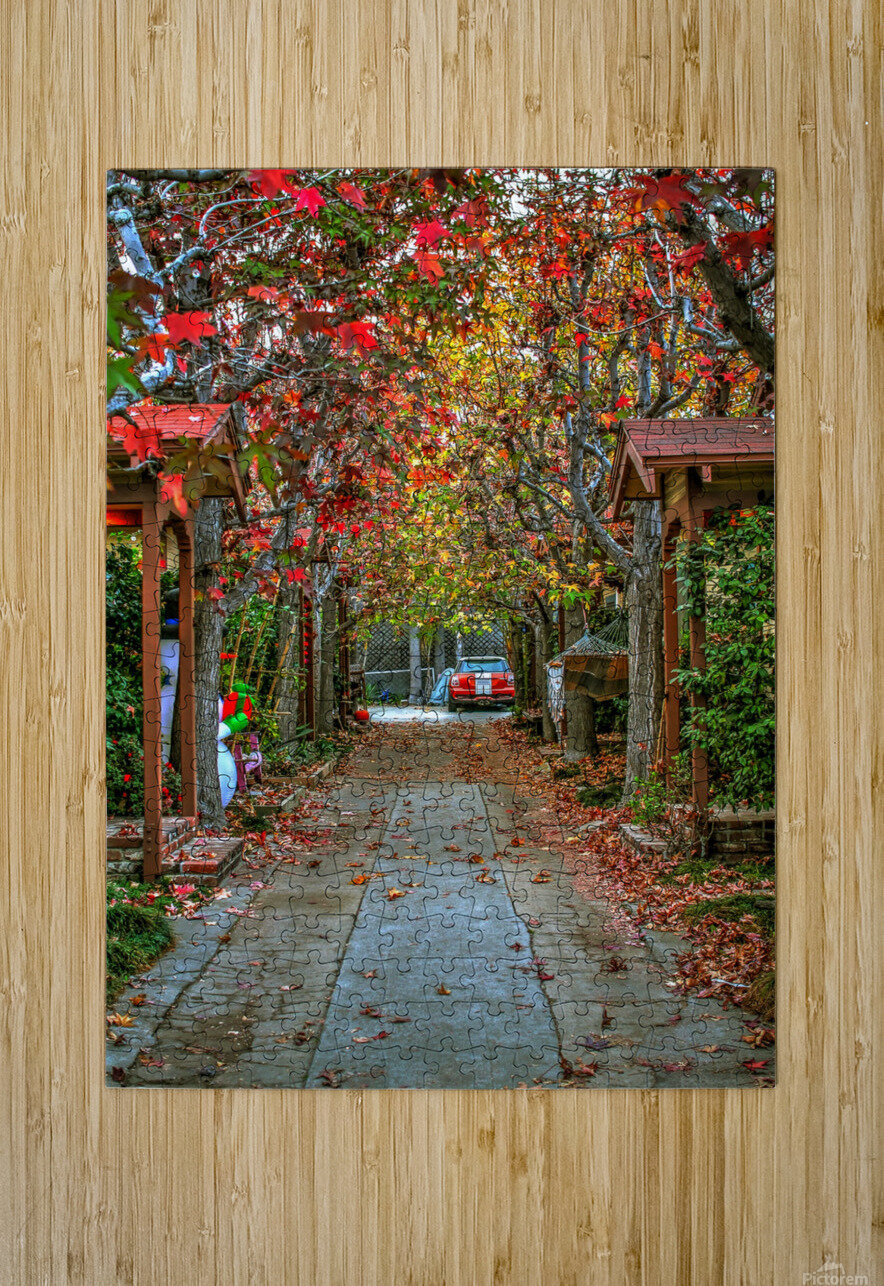 Fall in the city  HD Metal print with Floating Frame on Back