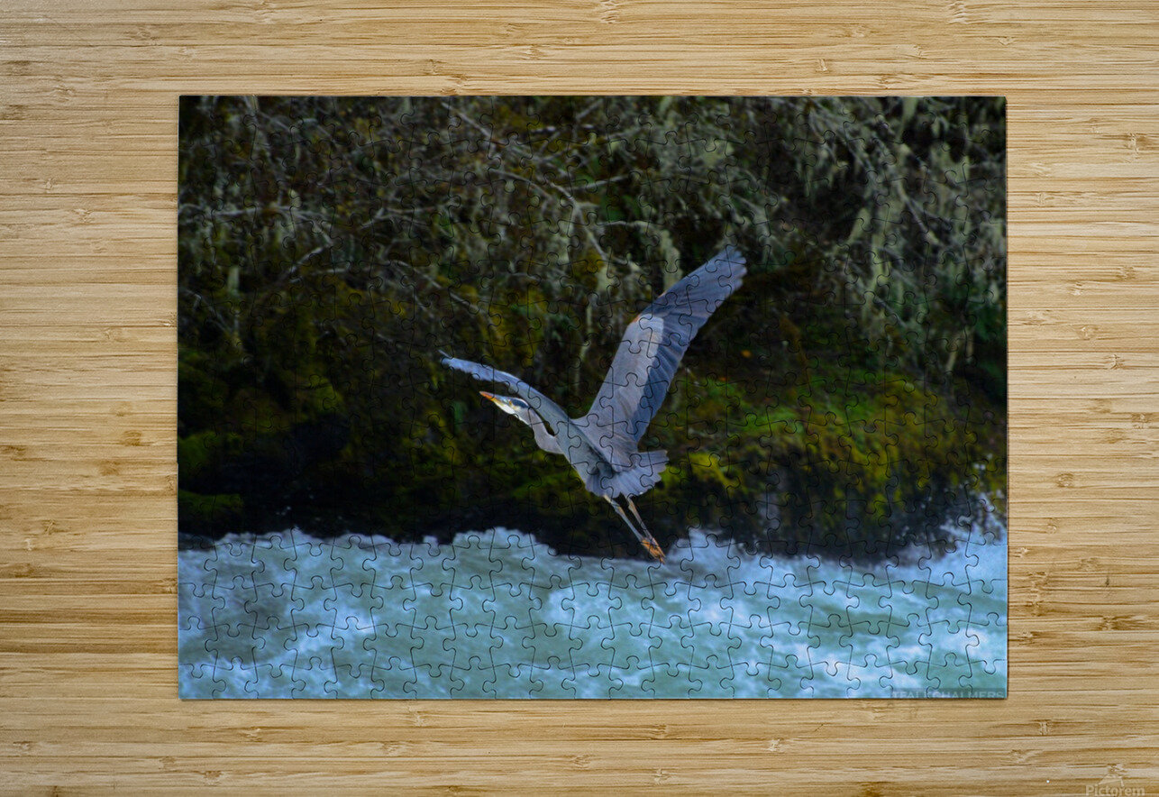 DSC_5880  HD Metal print with Floating Frame on Back