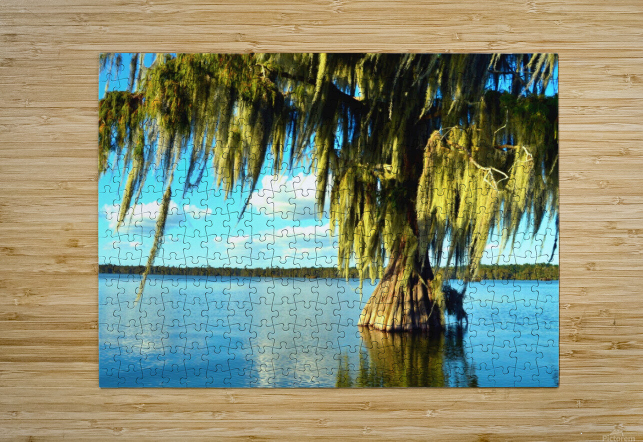 Blue Sky Green Leaves  HD Metal print with Floating Frame on Back