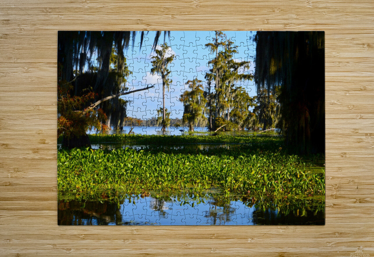 See Me Yet  HD Metal print with Floating Frame on Back