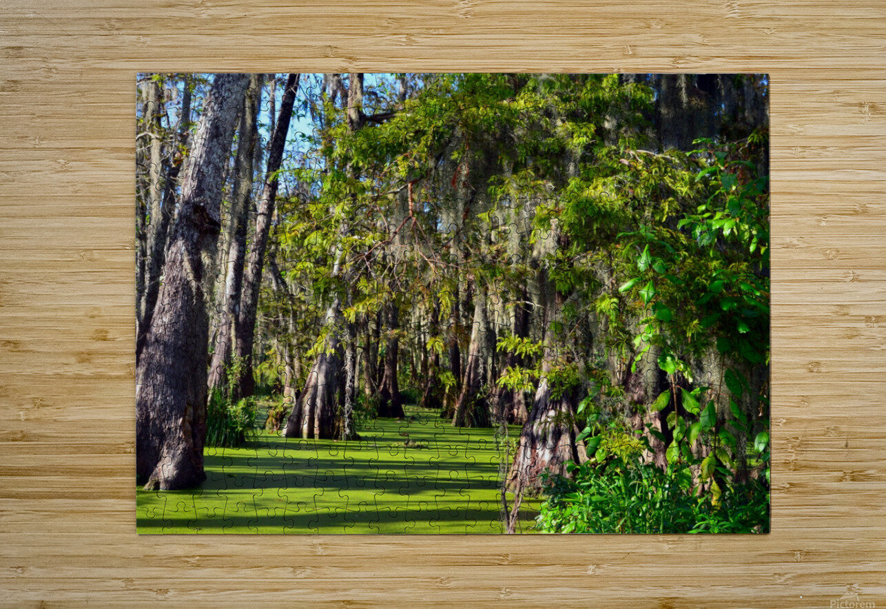 Travel My Path  HD Metal print with Floating Frame on Back
