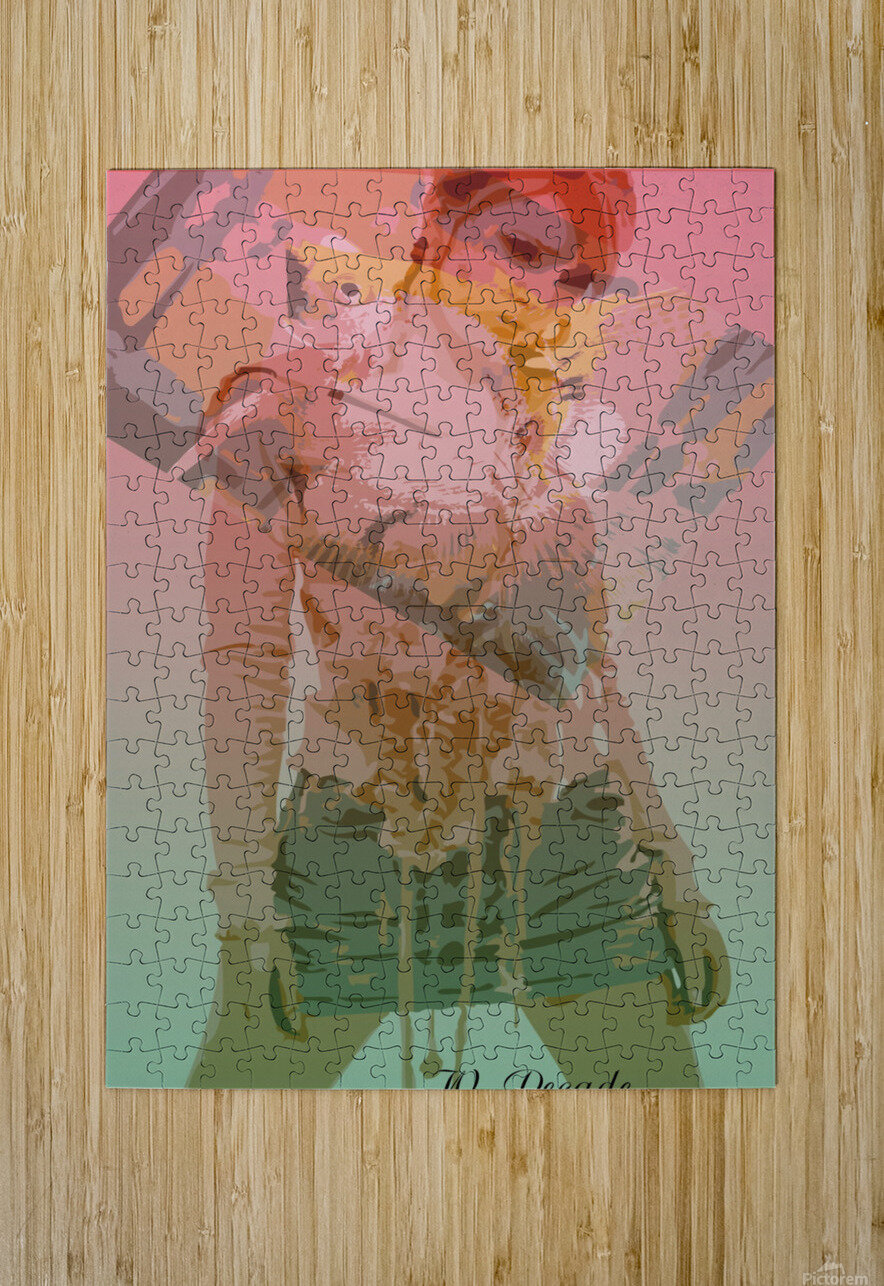 Digital Collage 3  HD Metal print with Floating Frame on Back