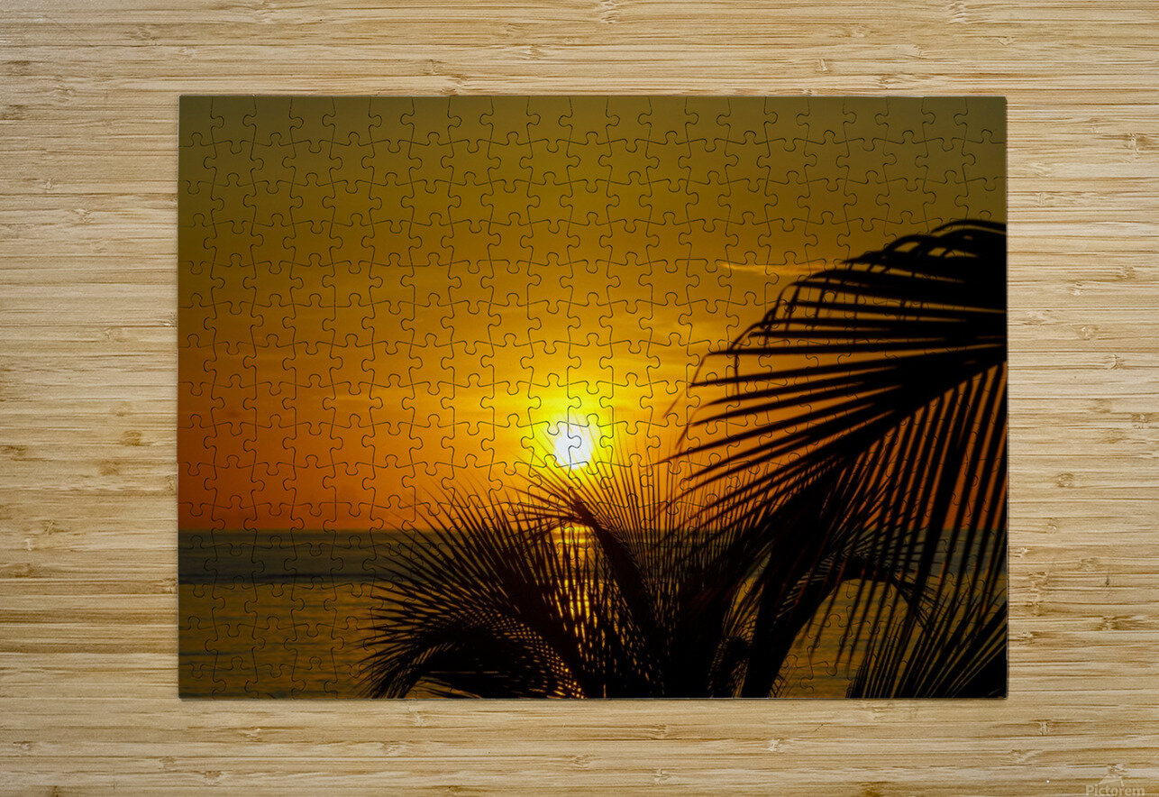 Sunrise at the palm tips  HD Metal print with Floating Frame on Back