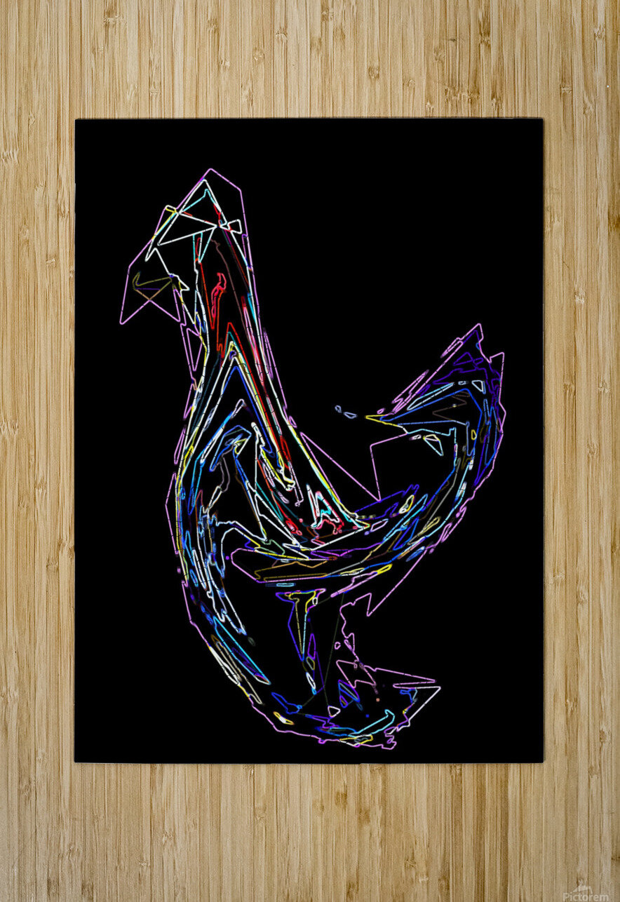BIRD  HD Metal print with Floating Frame on Back