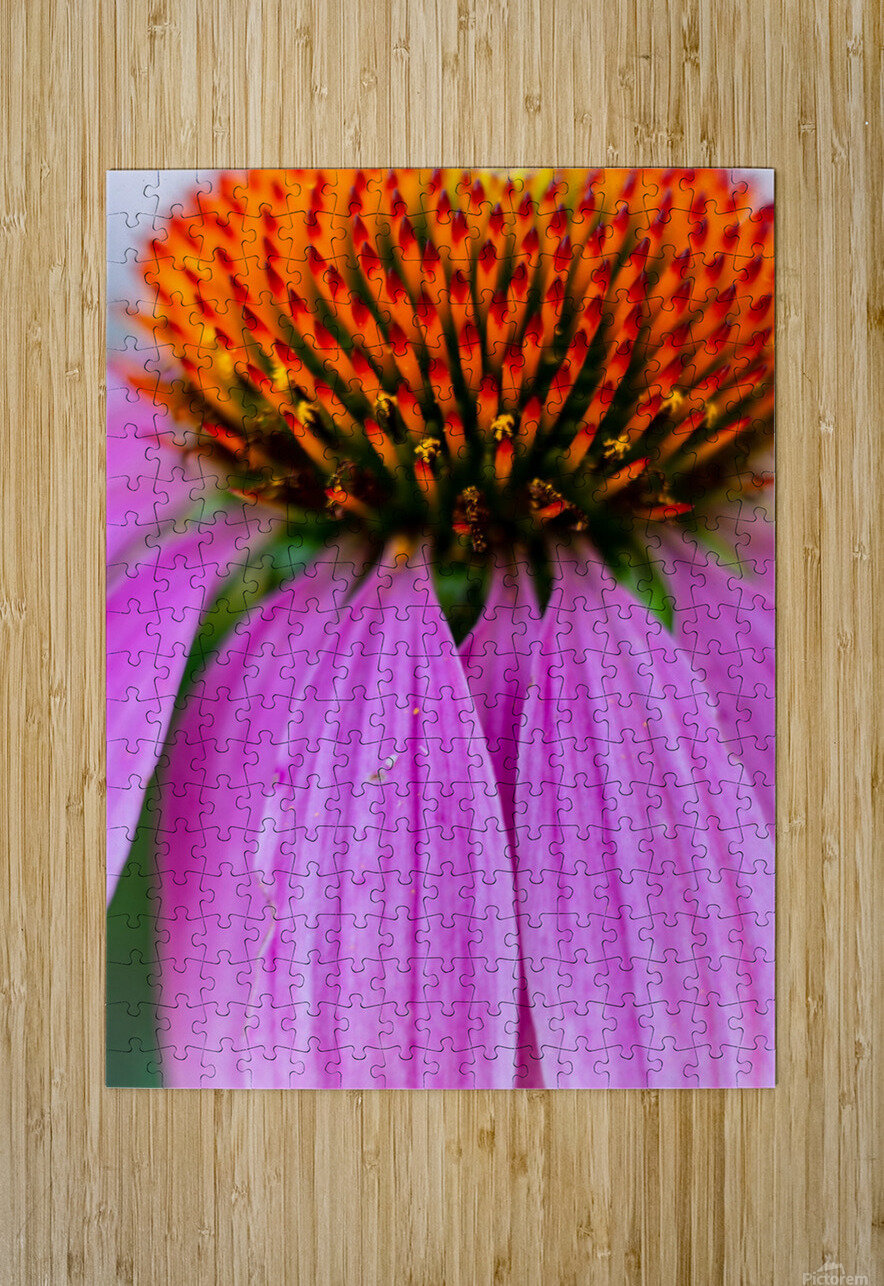 Treat a Cold  HD Metal print with Floating Frame on Back
