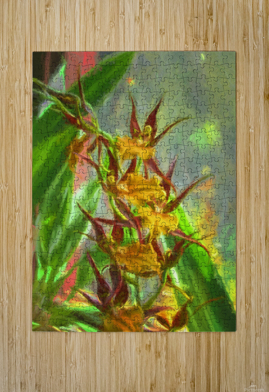Hawaiian Orchids Watercolor  HD Metal print with Floating Frame on Back