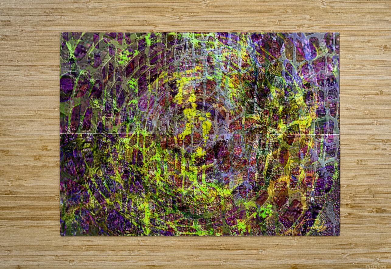 5F4780C8 AF40 414A A97A B966BFB11DF5  HD Metal print with Floating Frame on Back