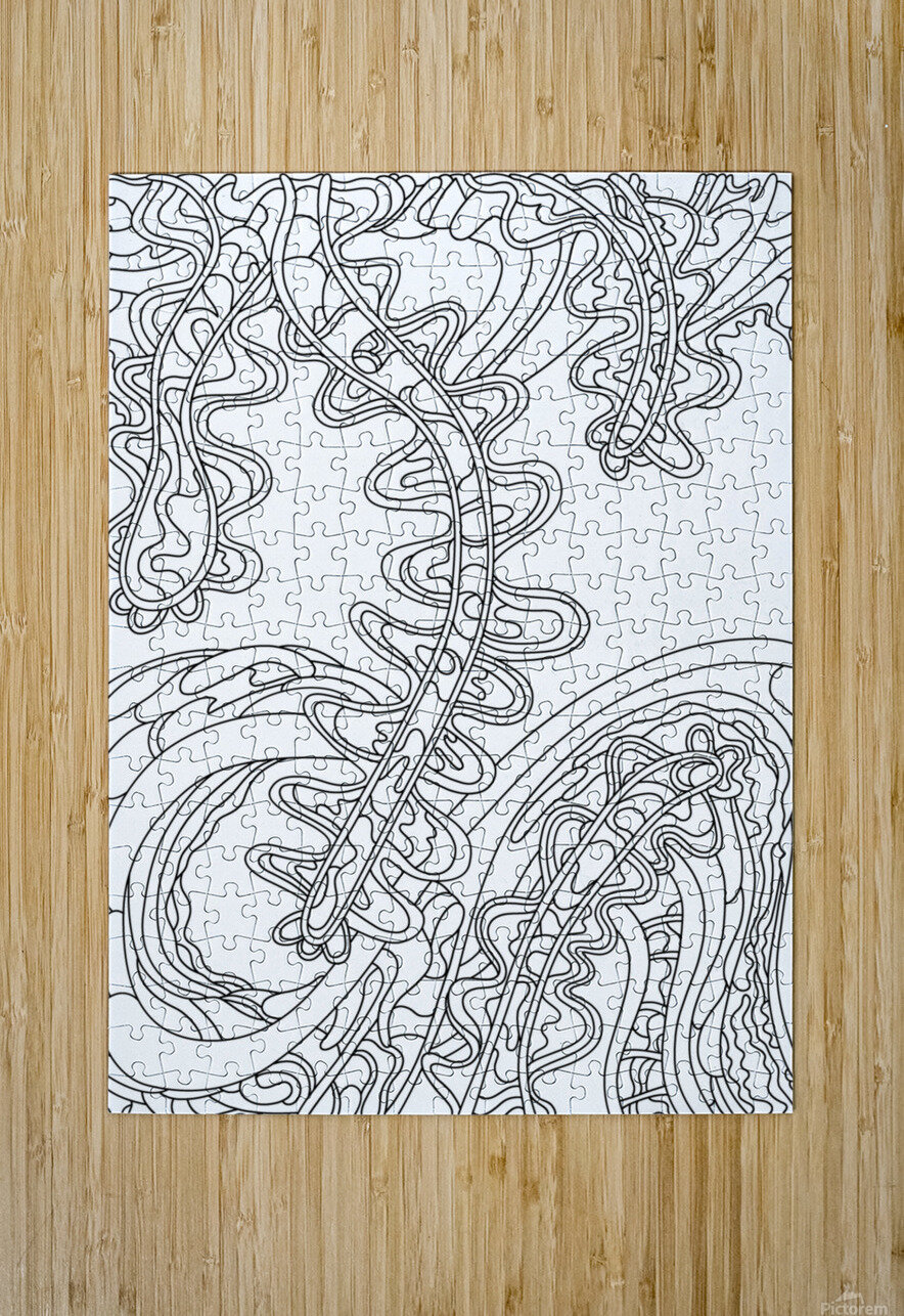Wandering Abstract Line Art 07: Black & White  HD Metal print with Floating Frame on Back