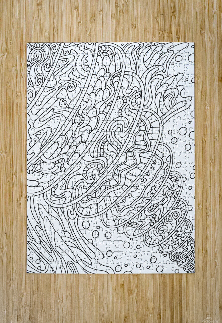 Wandering Abstract Line Art 11: Black & White  HD Metal print with Floating Frame on Back