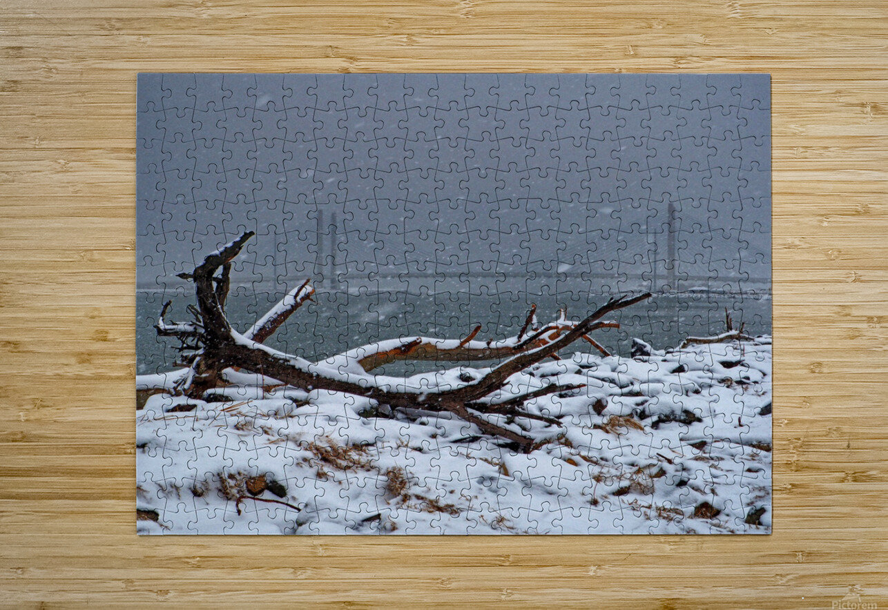 Indian River Bridge with Driftwood and Snow  HD Metal print with Floating Frame on Back