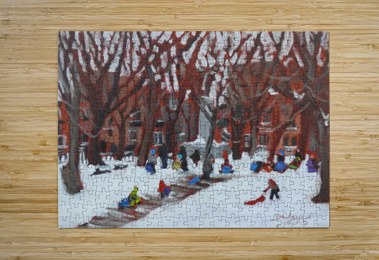 Park LaFontaine Tobogganing  HD Metal print with Floating Frame on Back