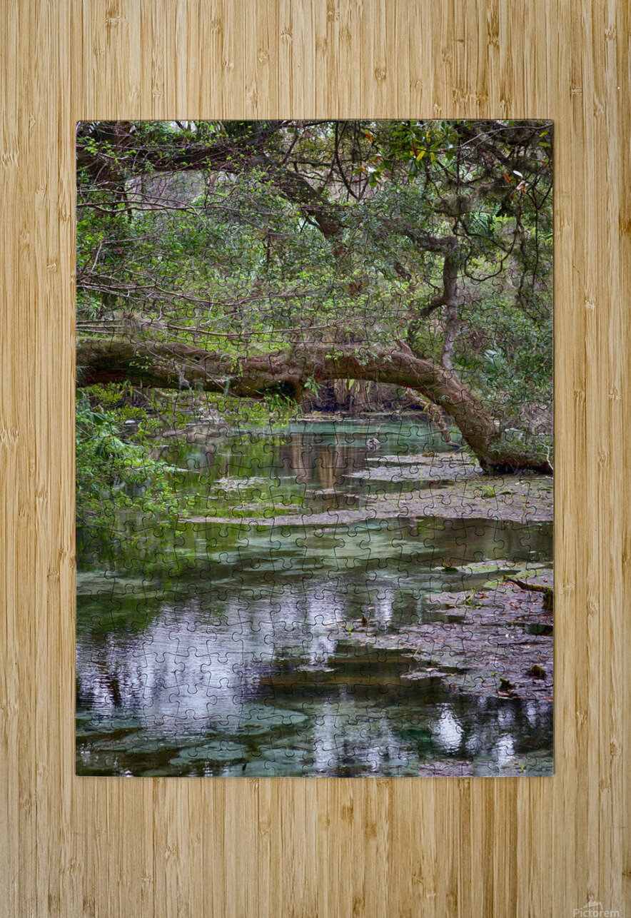 Stream   HD Metal print with Floating Frame on Back