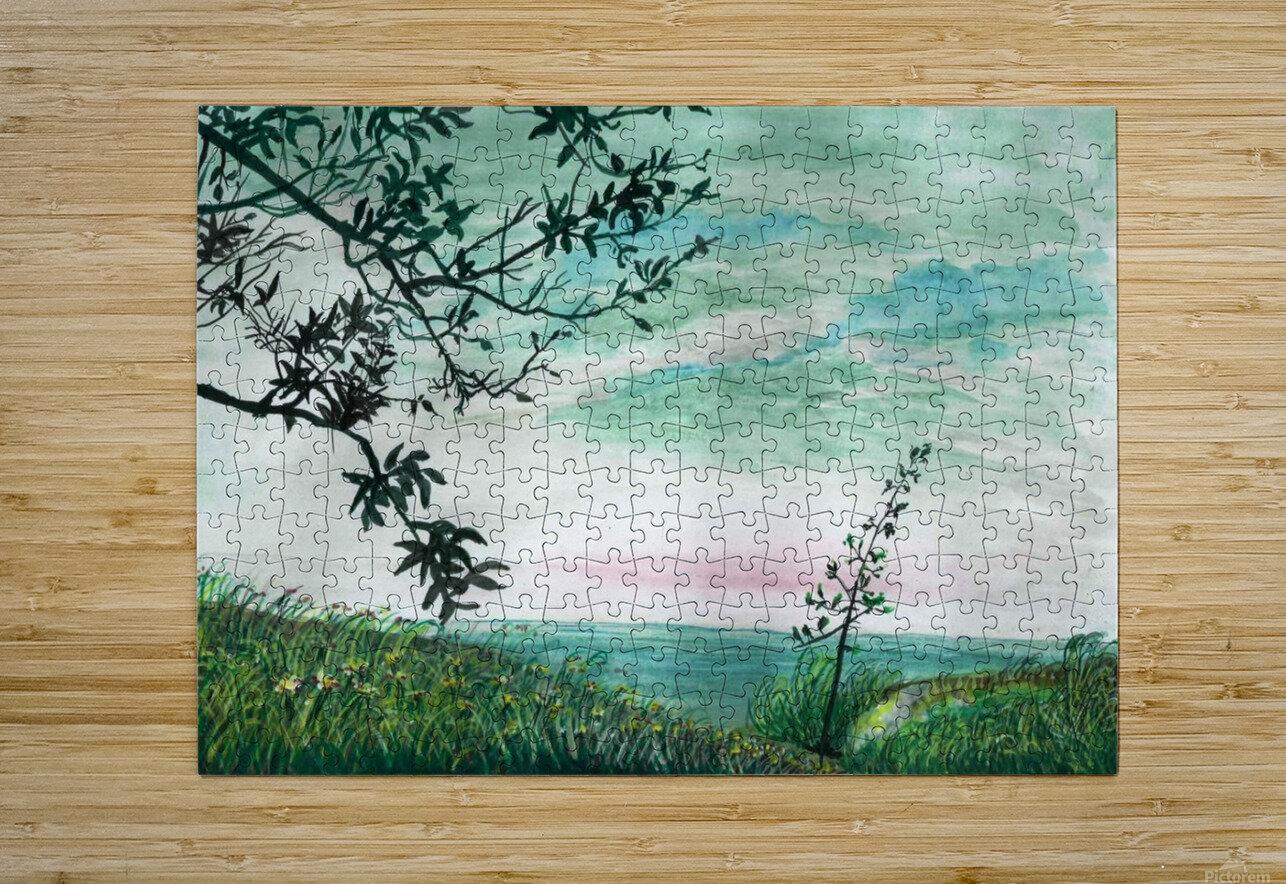 Landscape_DKS3  HD Metal print with Floating Frame on Back
