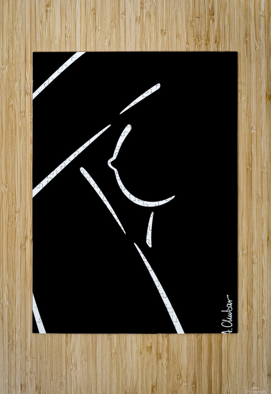 Nude 21  HD Metal print with Floating Frame on Back