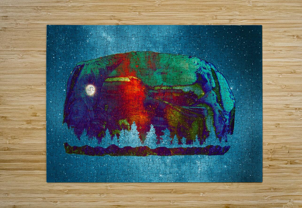Spirit of the North  Impression métal HD avec cadre flottant sur le dos