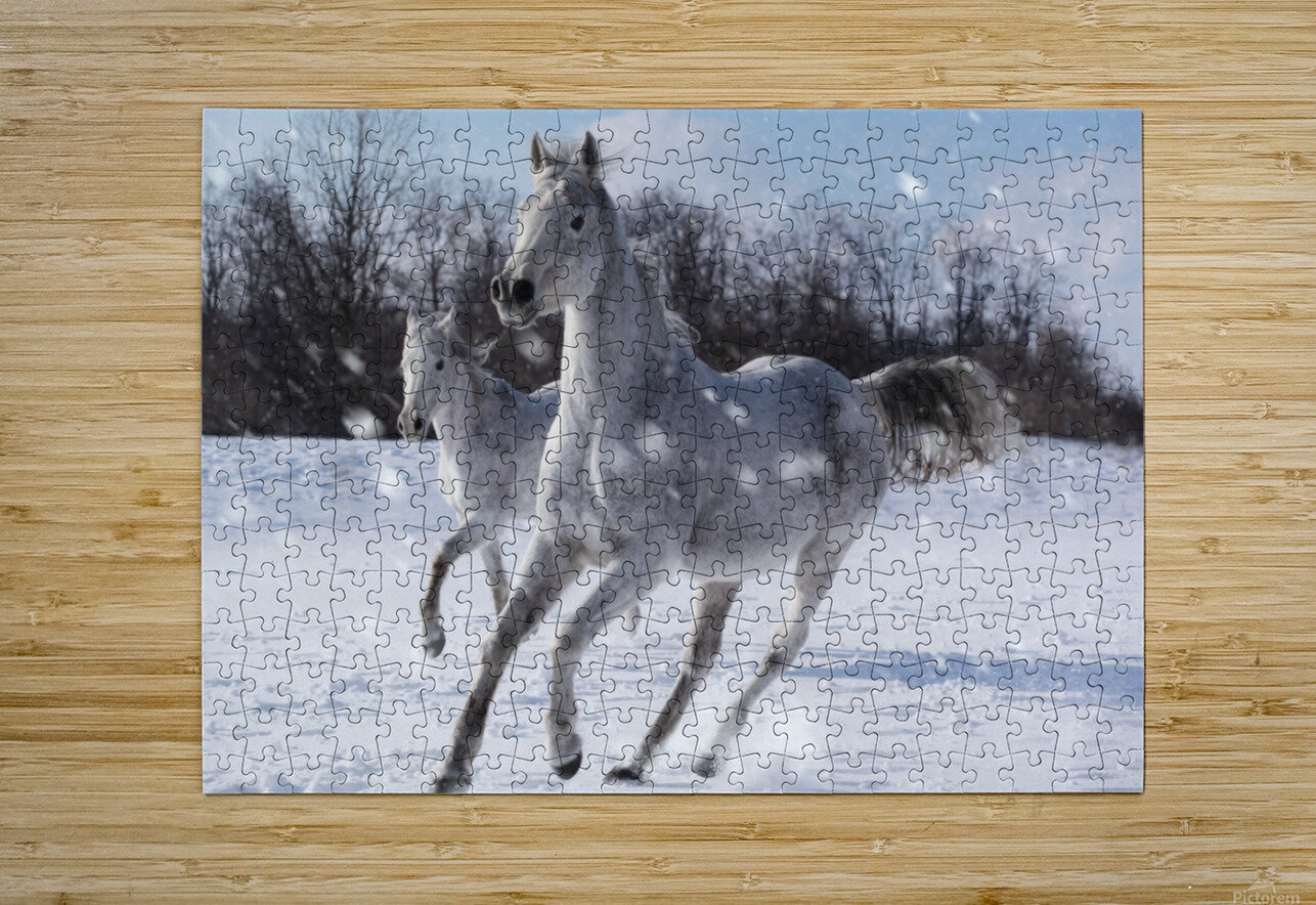Horses in the Snow  HD Metal print with Floating Frame on Back