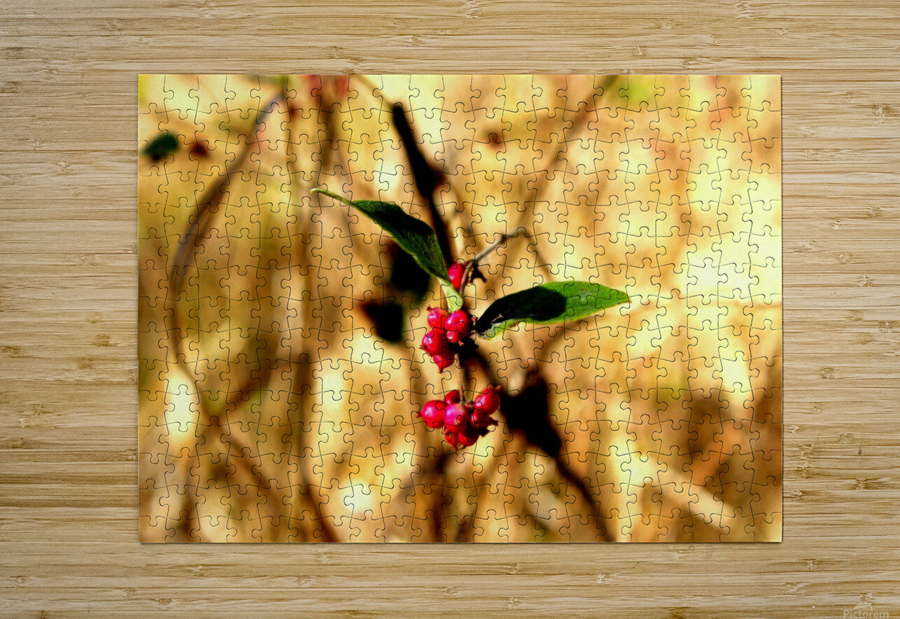 Fall Berries  HD Metal print with Floating Frame on Back
