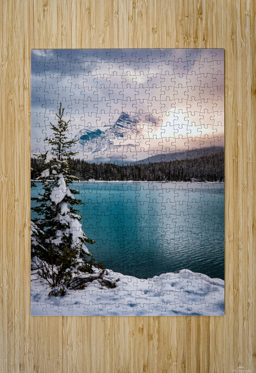 Winter Wonderland  HD Metal print with Floating Frame on Back