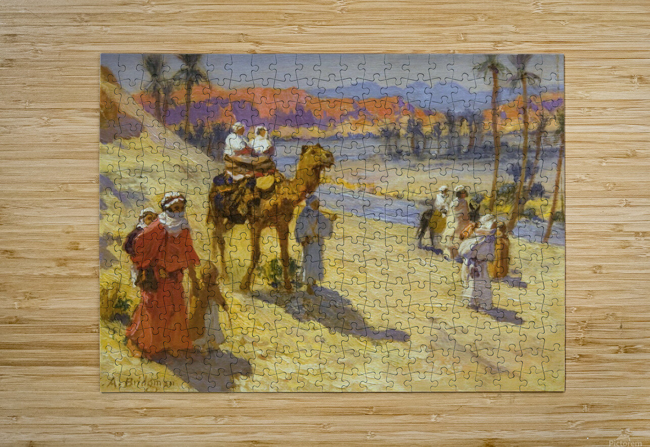 A walk through the dessert  HD Metal print with Floating Frame on Back