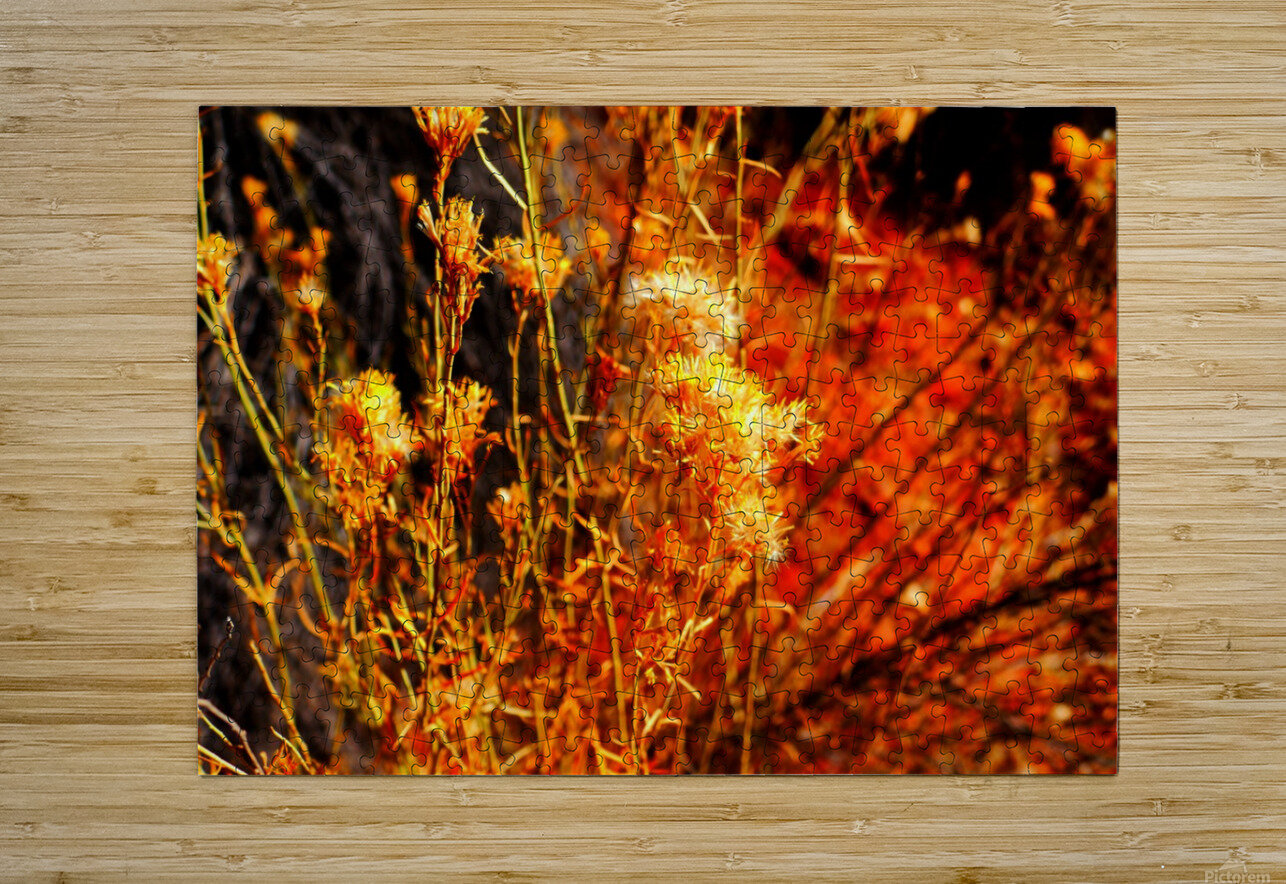 Falls Majesty   HD Metal print with Floating Frame on Back