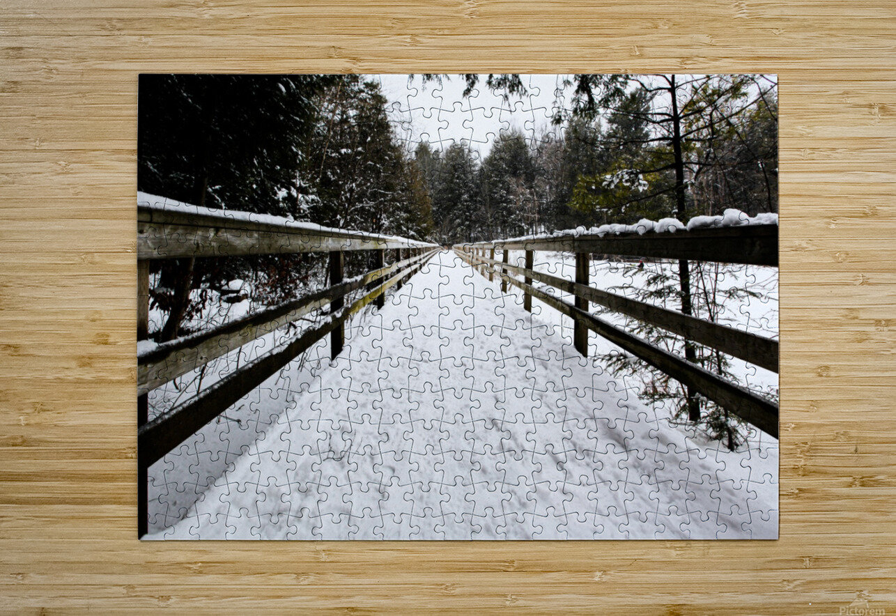 The Boardwalk  HD Metal print with Floating Frame on Back