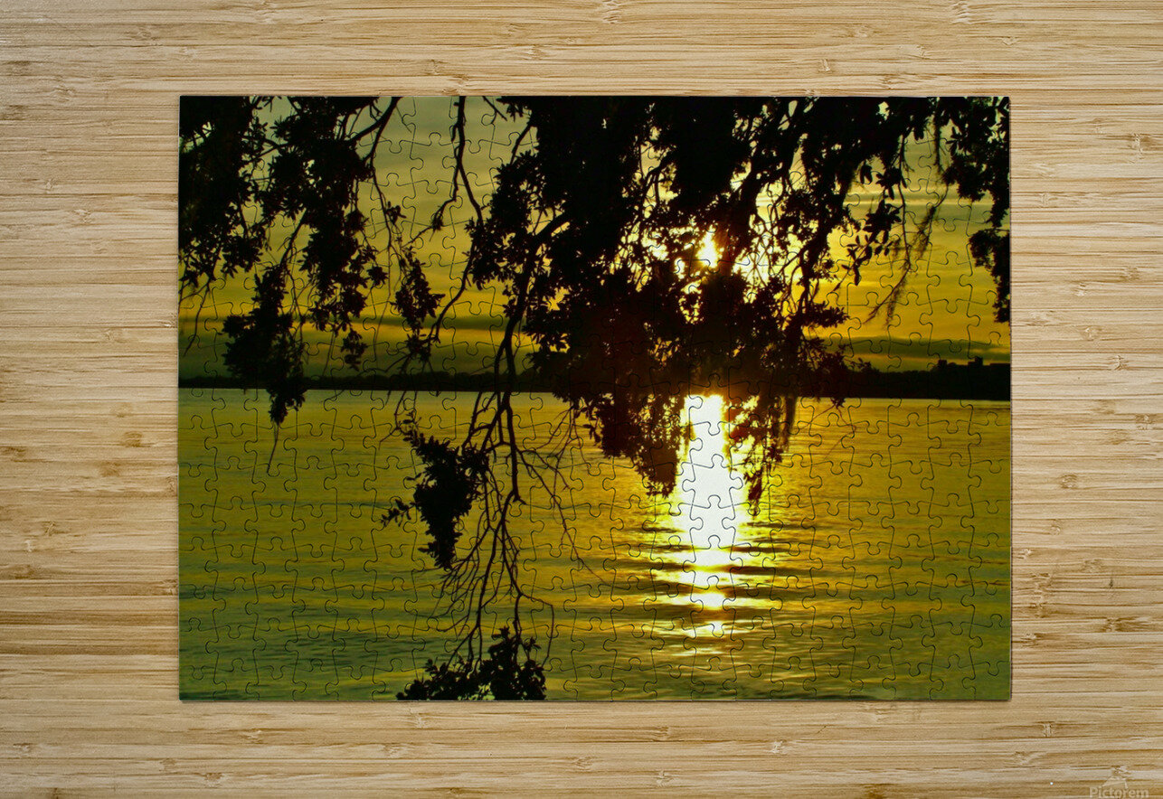 DSCF1707  HD Metal print with Floating Frame on Back